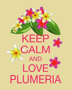 Keep-calm-and-love-plumerias........MY FAVORITE FLOWER