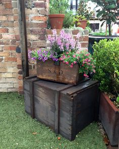 Old crates for a flower display at The Grounds of Alexandria