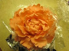 Very good tutorial on how to make a gumpaste Peony flower. Click on photo and it will take you to Andrea's Blog and Peony tutorial.