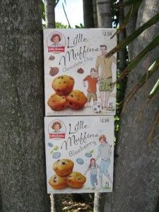Little Debbie Little Muffins Review & Giveaway
