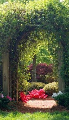 Arbor to secret garden