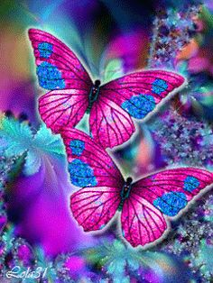 BEAUTIFUL BUTTERFLY'S ~^~^~^~^  pin from my awesome friend Gino