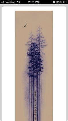 sequoia tree tattoo - Szukaj w Google