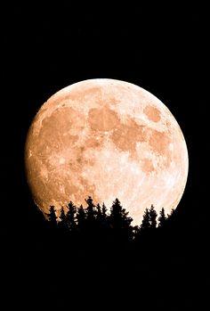 Black Forest Full moon, Germany, by multigiovanni