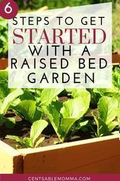 Spend Less On Fertilizers And Pesticides By Trying These Top Organic Horticulture Ideas – Gardening Growing Herbs, Growing Vegetables, Vegetables Garden, Organic Gardening Tips, Vegetable Gardening, Urban Gardening, Flower Gardening, Indoor Gardening, Hydroponic Gardening