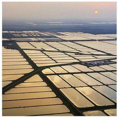Image result for mississippi delta aerial photo