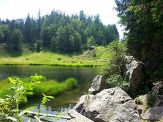Geführte Wanderung zum #Taubensee, #lake pidgeon,#bavaria,#chiemgau,#bavaria,#hiking,#tour,#Touristinfo/Verkehrsverein…