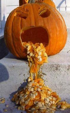 haha halloween