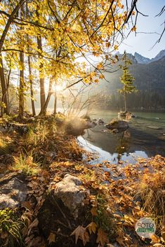 Country Roads, River, Blog, Outdoor, Outdoors, Outdoor Living, Garden, Rivers