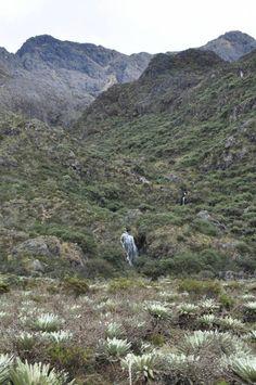 Bride Tumblr, Mountains, Country, Nature, Travel, Walking, World, Caribbean, Black Lagoon