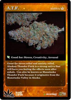 A.T.F. | Repined By 5280mosli.com | Organic Cannabis College | Top Shelf Marijuana | High Quality Shatter