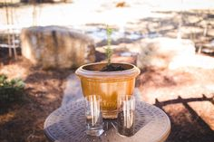 Tree planting unity ceremony at Della Terra. Joining roots together!  Photographer - Jenae Lopez - jlopezphotography.com  Read More: www.acoloradomountainwedding.com/2018/03/you-are-all-i-need/