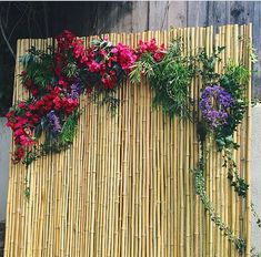 Easy photo booth backdrop idea - bamboo! And can stick/drape anything on top ! More