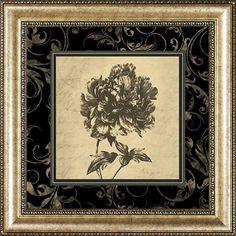 Sepia Floral I, Framed Art, Black