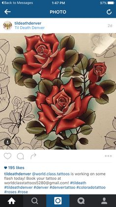 Neotraditional roses