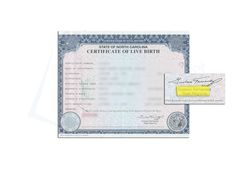 marriage certificate nevada and marriage on pinterest
