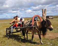 Mongolia People at work