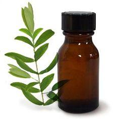 Cómo hacer jabón de arcilla verde. El jabón de arcilla verde es altamente beneficioso para tratar las impurezas del rostros y los puntos negros. Sus propiedades absorbentes y antioxidantes lo convierten en un jabón facial perfecto para...