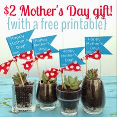 20 minute crafter: a $2 Mother's Day Gift {and a free Mother's Day printable}!!