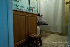 """Here are the """"Judges Choice"""" awards as selected by Dylan E. Richards, Erika Jensen-Mann and Tasneem Alsultan. Christopher Jones, First Photograph, Photo Series, Choice Awards, Award Winner, Documentary, Penguin, United States, Judges"""