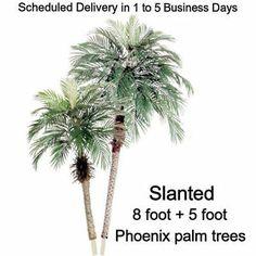 8 foot + 5 foot SILK ARTIFICIAL PHOENIX PALM TREE PLANTS date areca bamboo fake