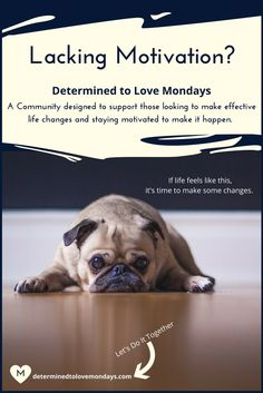 Join the Determined to Love Mondays Community for Life Planning Support |The Ultimate Life Planning & Goal Setting Workbook | Goal Setting | Life Planning| Life Changes | Job Change | Career Change | Planning | Planner | Bucket List | Vision Board| Wish List | Printables | Worksheets| Resolutions | Quotes| Moving On | Starting a Business | Inspiration | Motivation | Bullet Journal | Journaling | Gifts for her | Gifts for Women | Planning a Life | New Year's Resolutions | Organization