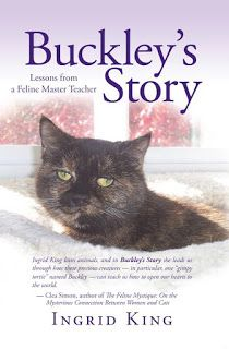 Fur Everywhere: Buckley's Story: Book Review #books #BookReview #Review #cats #memoir