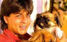 Srk with his favorite dog Dash