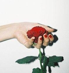 Gambar Hati Bunga Mawar Ini Untukmu Sang Pemain Hati Setiap Bunga Punya Makna Yang Berbeda Jangan Sampai Salah Sangka Mawar A Gambar Bunga Menggambar Hati