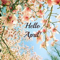 ~Katarina~Hello april pictures and sayings Seasons Months, Months In A Year, Calendar Wallpaper, Photo Wallpaper, Nature Wallpaper, Hello Spring Wallpaper, Happy Birthday April, April Clipart, April Images