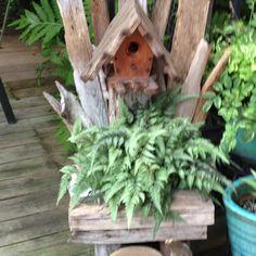 Driftwood birdhouse/planter!!