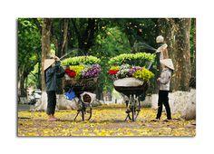 Ha Noi -  Viet Nam by Thanh Phan, via 500px