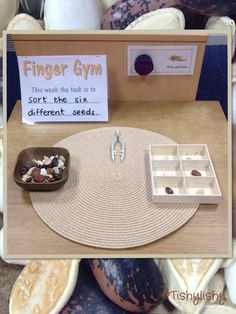 Finger Gym - sort the seeds. Fine motor skills, hand-eye co-ordingationFinger Gym - sort the seeds I like the idea of a Finger Gym centerEarly Years ideas from Tishylishy. Sharing photos, provision enhancements and outcomes from my EYFS class and the occa Motor Skills Activities, Gross Motor Skills, Preschool Activities, Dementia Activities, Preschool Learning, Physical Activities, Fine Motor Skills Development, Physical Development, Finger Gym