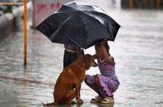 These kids, who gave a friend some much needed shelter from Mumbai's harsh monsoon. | 17 Photos Everyone Needs To See To Remember How Wonderful India Really Is