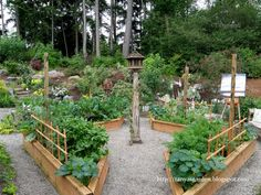 I like the layout of this raised garden, but I would have a strawberry tower in the center.  MySecretGarden: Herbs and Vegetables