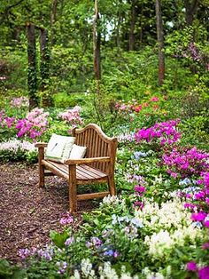 Spring flowers bloom in an Illinois woodland garden. Read more about this garden: http://www.midwestliving.com/garden/featured-mwl/illinois-woodland-garden/