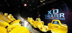 Experience the thrills at the 4D Motion Video with MSC Cruises