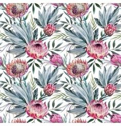Tropical protea pattern vector