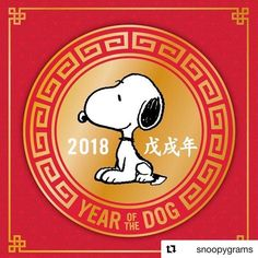 Happy Chinese New Year!! May it be full of Luck! #yearofthedog Welcoming the Year of the Dog #LunarNewYear #chinesenewyear #snoopy