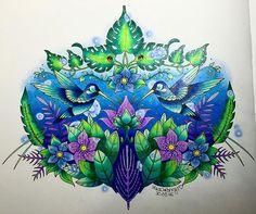 After a week finally finished 😎👍☘🙊 - #johannabasford #magicaljungle #johannabasfordmagicaljungle #meingeheimnisvollerdschungel #ilovecoloring #prismacolor #prismacolors #uniballsigno #coloringbook #colibri #kolorowo #kolorowankidladorosłych #kolorowanki #beautifulcoloring #enchantedcoloring #coloringmasterpiece #creativelycoloring #coloringforadults