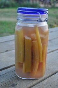 ginger rhubarb pickles