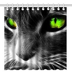 Cat with green eyes Animal HD desktop wallpaper, Cat wallpaper - Animals no. Tier Wallpaper, Cat Wallpaper, Animal Wallpaper, Green Wallpaper, Computer Wallpaper, Cool Cats, Gatos Cool, Photo Chat, Grey Cats