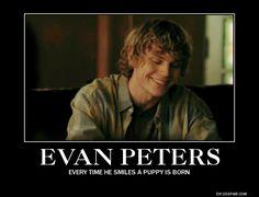 evan peters wallpaper - Pesquisa Google