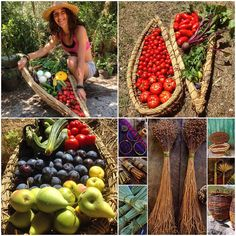 "Meet Stefania Crispino @fruitarianfarmer from Vallemaio Italy  ""I was raised in a bustling city in chilly Scotland in a high rise flat. We had no garden growing up. Every time I came to Italy to visit my father I was in awe of gardening nature and the serenity of the countryside. I loved getting my hands dirty and the bond with nature felt like coming home. I grew up buying everything from supermarket shelves in packets and not caring about where the food came from. I developed various…"