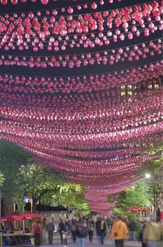 Les Boules Roses installation in Montreal. The piece features 200,000 resin balls in three sizes and five tones of pink. Using bracing wire, the rows of balls are laced through the trees in nine different suspension patterns and at varying heights. The final product is a magical canopy stretching over 1km between St. Hubert and Papineau streets.