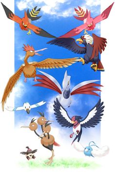 Talonflame & Braviary & Fearow & Swellow & Wingull & Dodrio & Swablu & Vullaby