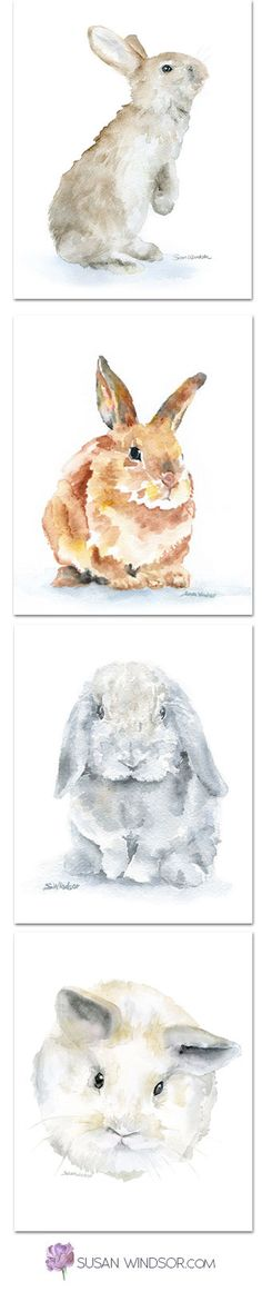 Watercolor bunny rabbit prints available in 4 sizes by Susan Windsor