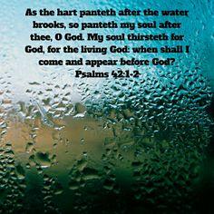 Thirst for God