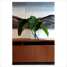 Palm leaves in vase