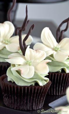 May be our next cupcake challenge. Chocolate Mint Cupcakes with beautiful white modeling chocolate flowers Fancy Cupcakes, Pretty Cupcakes, Beautiful Cupcakes, Yummy Cupcakes, Wedding Cupcakes, Elegant Cupcakes, Cupcake Wedding, Mocha Cupcakes, Gourmet Cupcakes